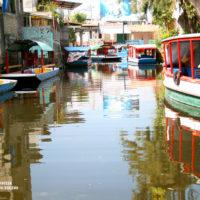 Una vuelta en Trajinera por los canales de Xochimilco en Ciudad de México