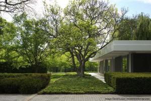 Parque de la Miller House.