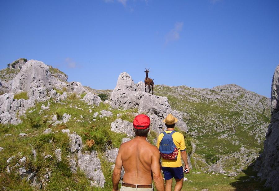 A nuestro paso, encontramos cabras montesas, justo antes de llegar a los Ojos del Diablo. Foto de María Calvo.