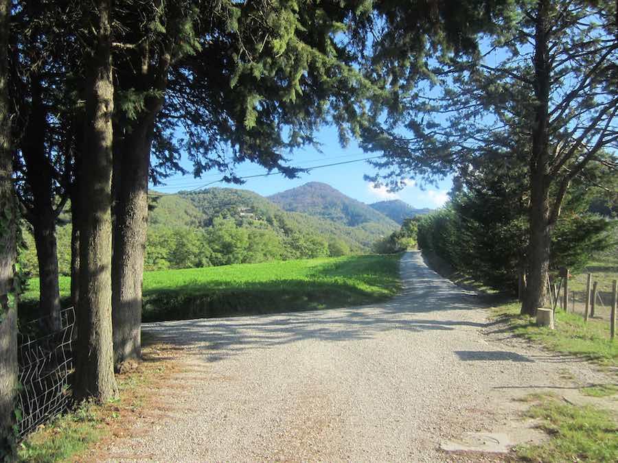 Campiña al norte de VIcchio.©Iñigo Pedrueza.