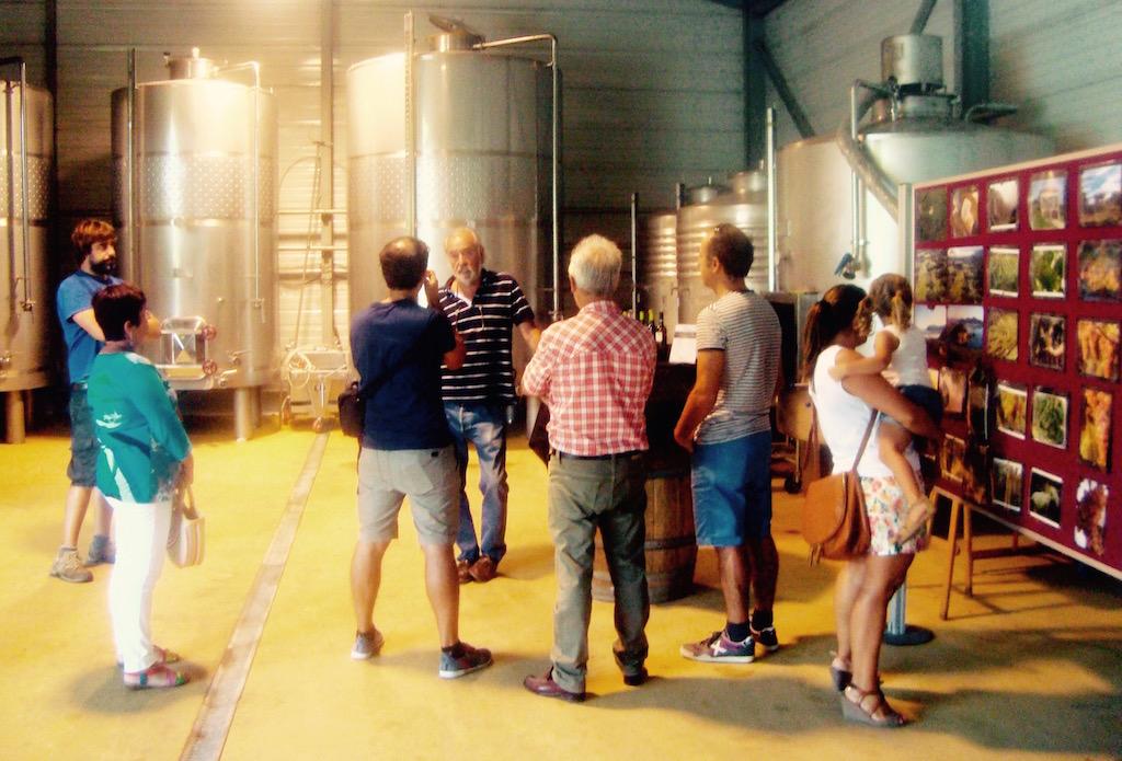 En las Bodegas Vidular nos explican todo el proceso por el que pasan las uvas hasta llegar a convertirse en estos deliciosos vinos. © María Calvo.