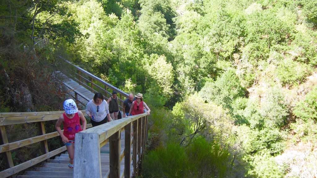 Subiendo a la pasarela del río Mao, en seguida nos situamos a la altura de las copas de los árboles y la perspectiva es magnífica. ©María Calvo.