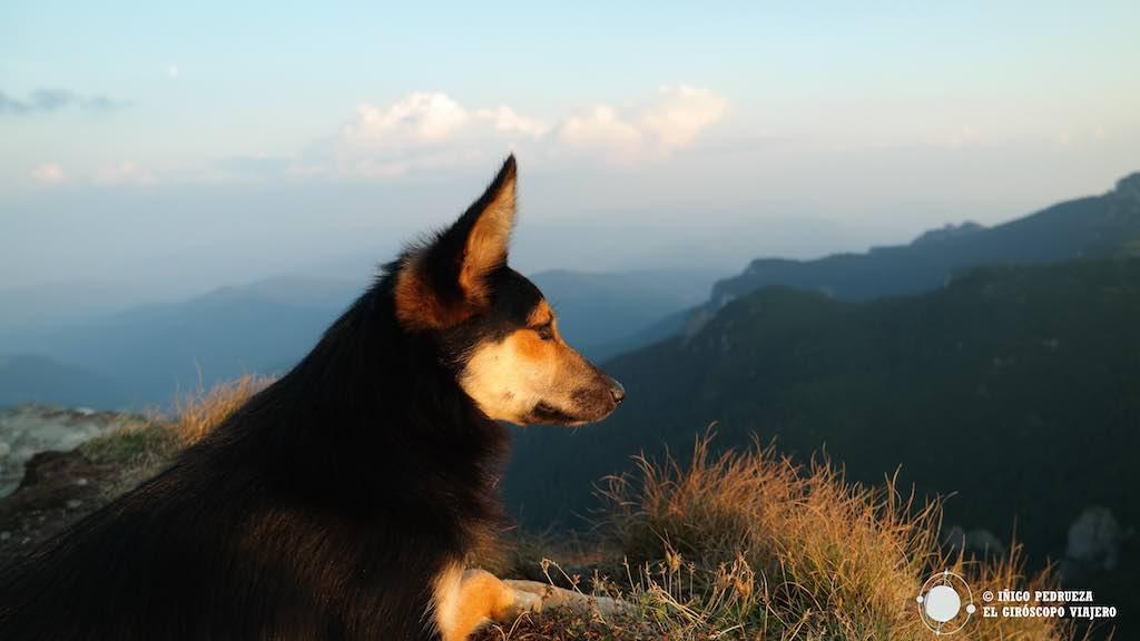 Nuestra guía en el pico del Ceahlau. ©Iñigo Pedrueza.