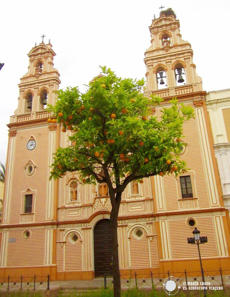 En la catedral de Huelva anidan las cigüeñas