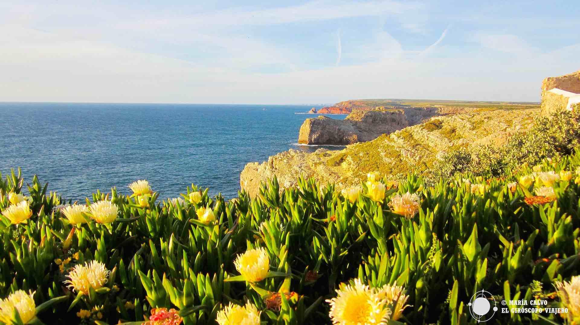 El Algarve más salvaje. Ruta por la costa Vicentina