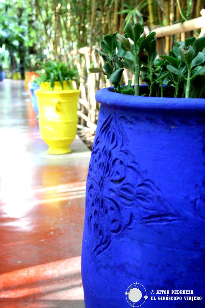 Detalles coloridos en los jardines