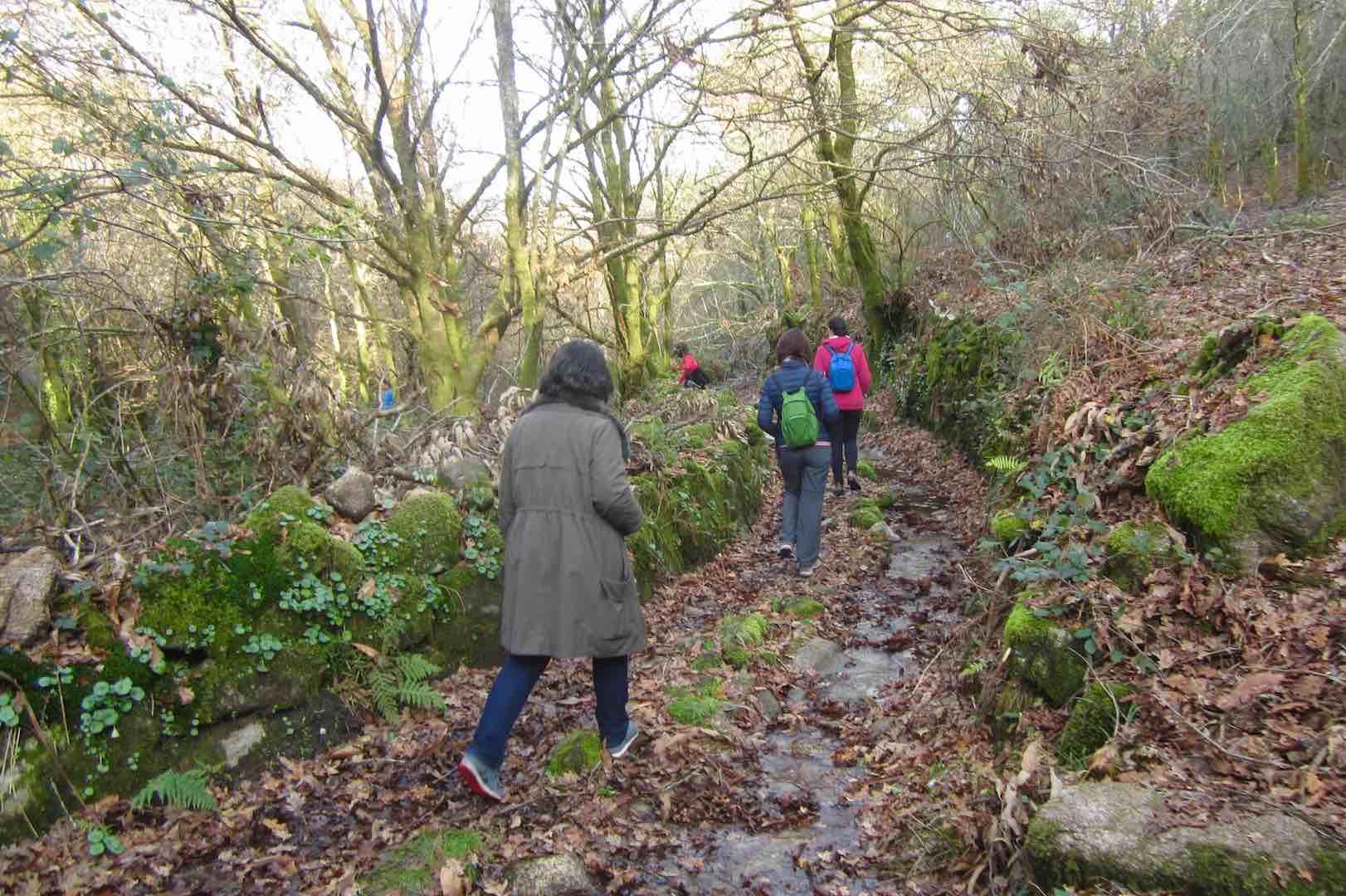 De senderismo por Galicia I. Tras los pasos del Camino Real