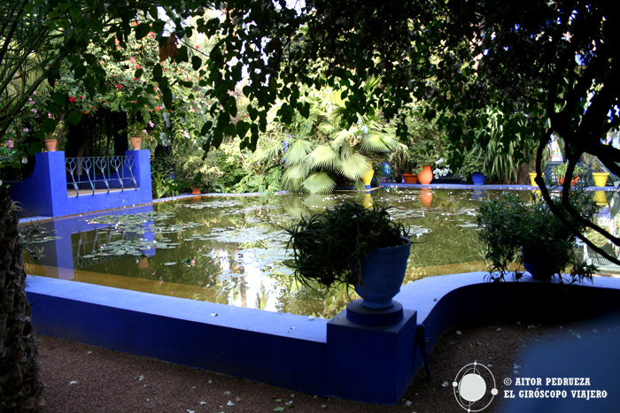 Los estanques de los jardines Majorelle cubiertos de flora