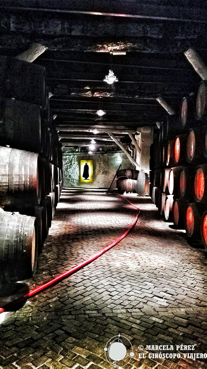 Sandeman cual fiel centinela de los Vinos de Porto
