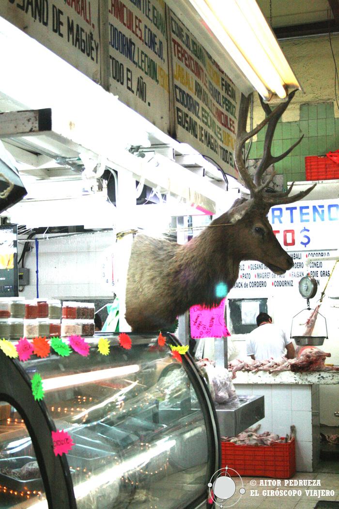 Una cabeza de ciervo, rarezas en el mercado de San Juan