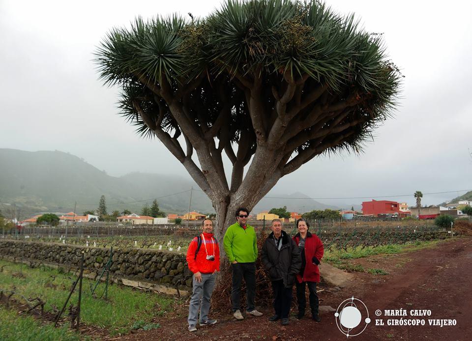 Con los propietarios de la Bodega La Isleta, delante de un Drago centenario