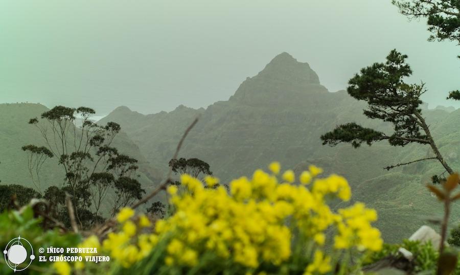 La orografía, el clima y la tierra volcánica, causas del vino. Anaga, cerca de Tegueste y de sus viñas. ©Iñigo Pedrueza.
