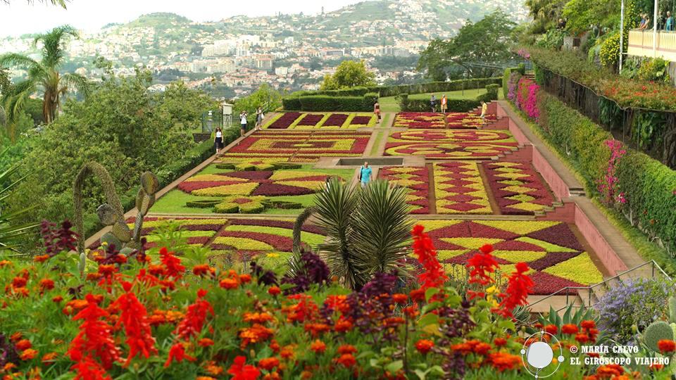 Soberbio el Jardín botánico de Funchal