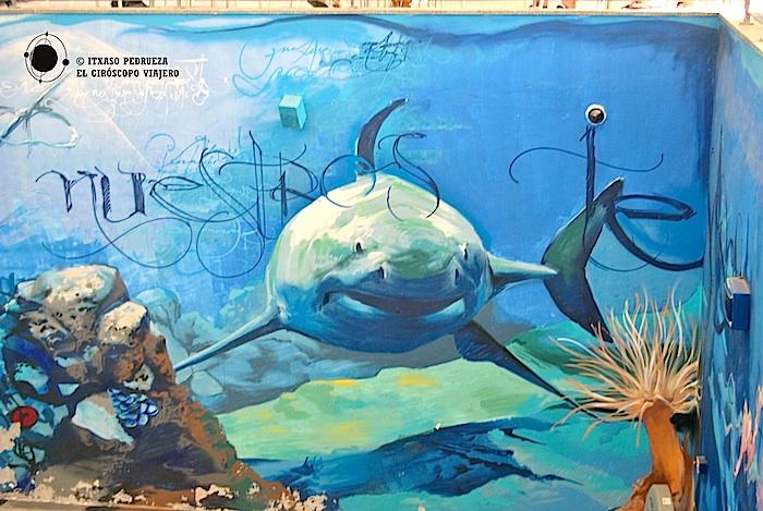 grafitti acuario