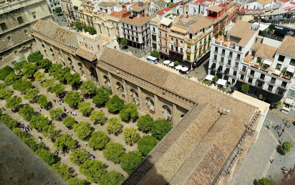El magnífico Patio de los naranjos de la catedral de Sevilla