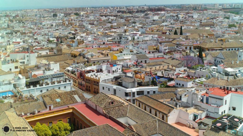 Magnífica la ciudad de Sevilla desde lo alto de la Giralda