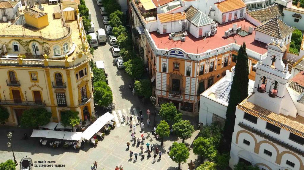 Espío a los habitantes de Sevilla agazapada en la atalaya de la ciudad