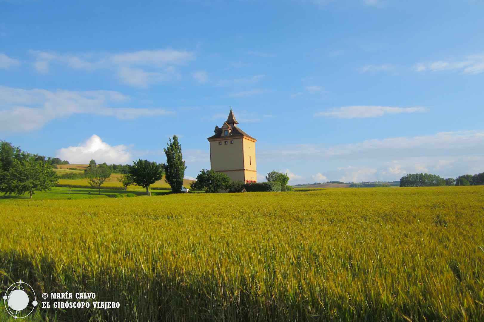 En medio de los campos de cereal se alzan imponentes algunos palomares del Tarn-et-Garonne