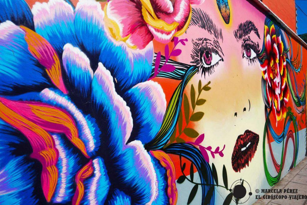 Arte urbano en las cercanías del parque El Llano