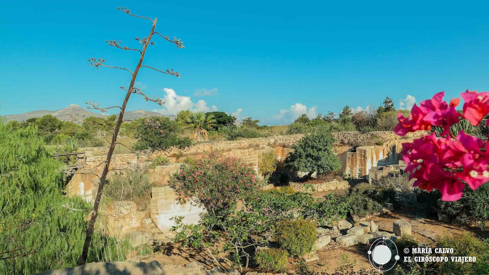 Imagen del Jardín de lo Imposible excavado en la piedra caliza