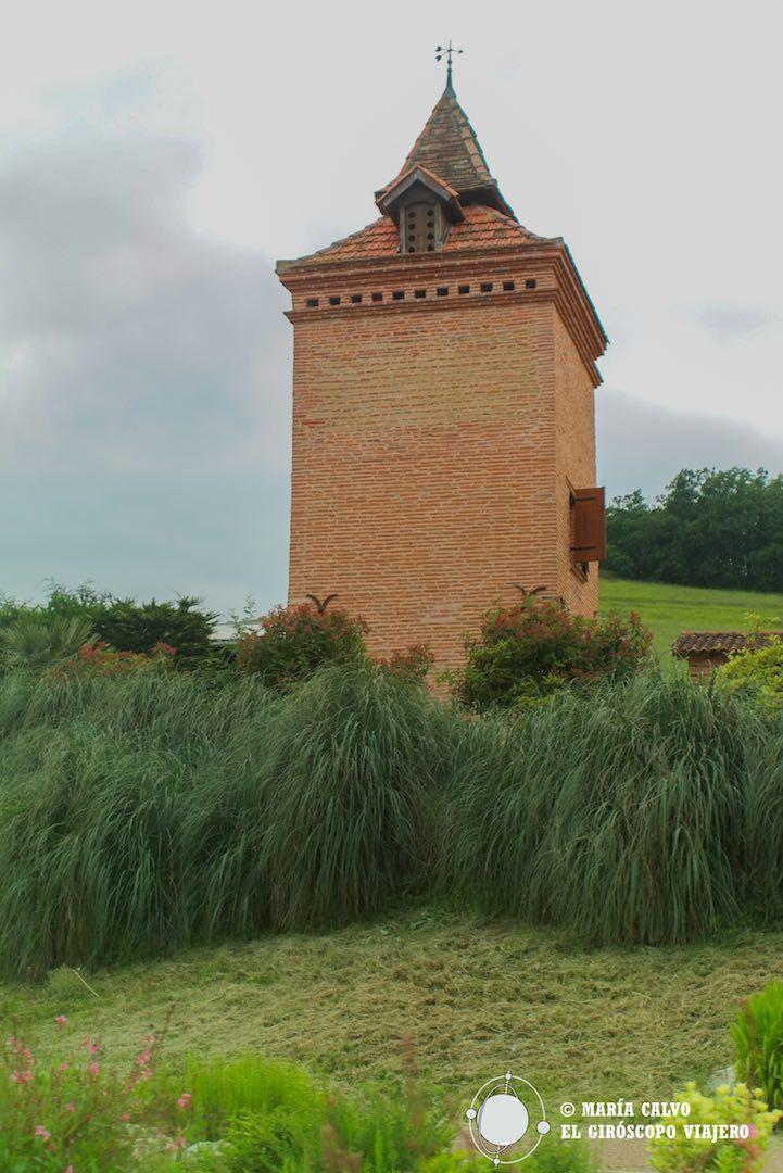 Palomar en los campos del Tarn-et-Garonne