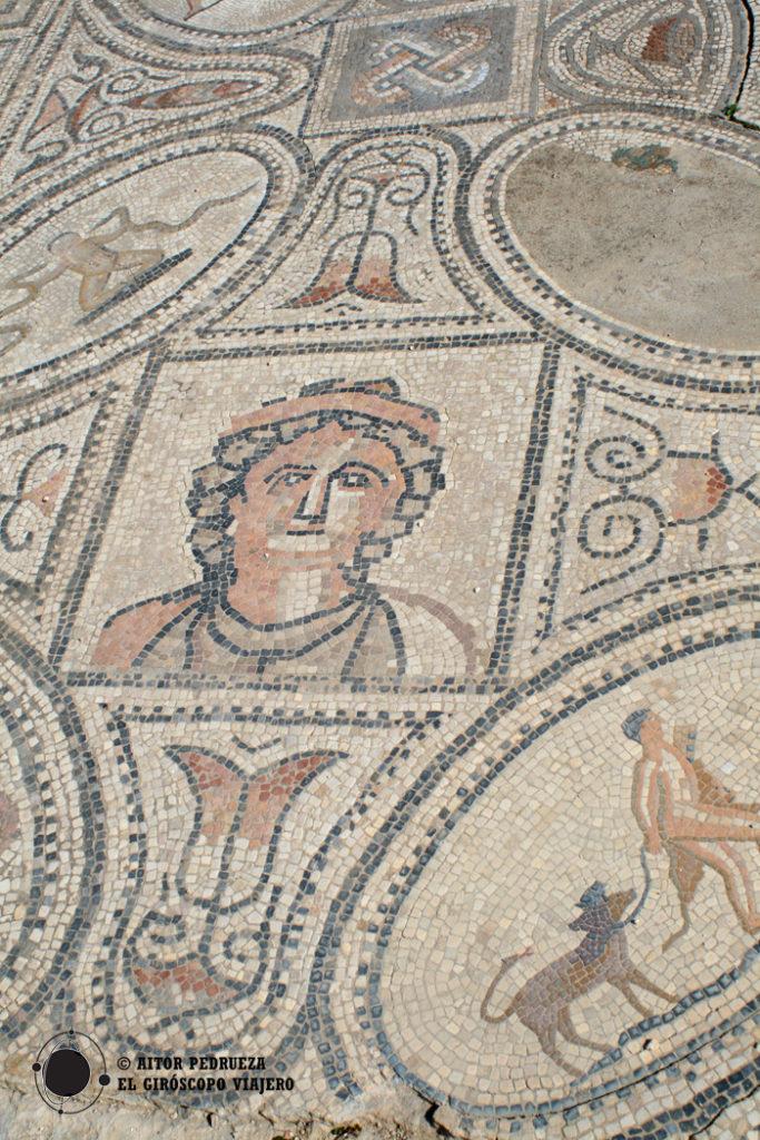 El mosaico de la Casa de Hércules