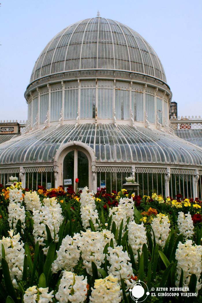 Jardín Botánico de Belfast
