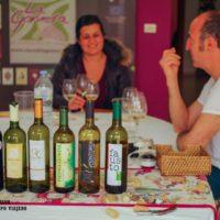 La excelencia de los Vinos de La Gomera. Una denominación de origen por descubrir
