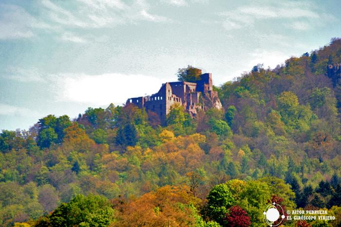 El castillo de Baden Baden oculto entre el frondoso bosque