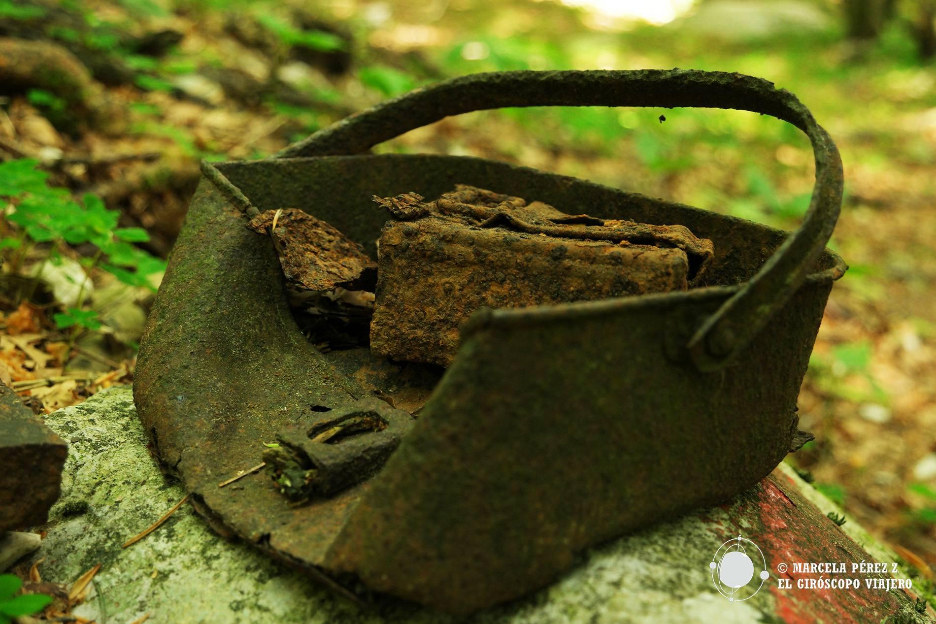 Objetos de los soldados abandonados en el bosque