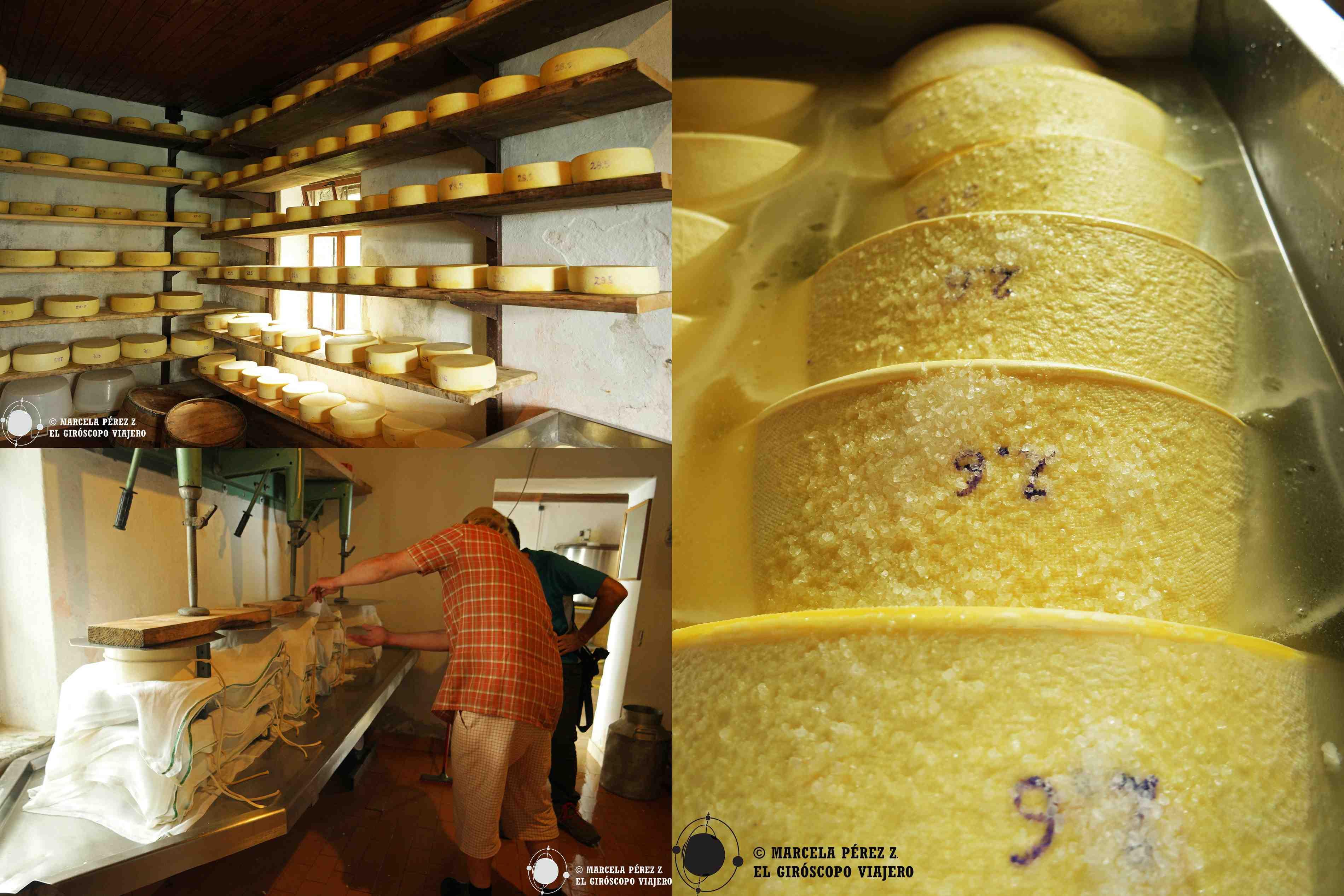 Fabricación de queso en la casa de pastores de Medrje
