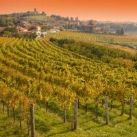 El pueblo de Smartno en la región vinícola eslovena de Brda
