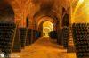 Las Catedrales del Vino de Canelli en el Piamonte