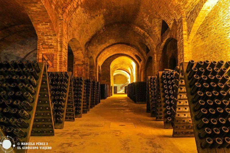 En el interior de la Catedral del Vino de Bosca ©Marcela Pérez Z.