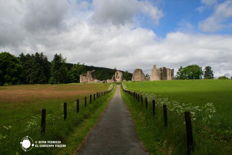 Camino hacia el castillo de Kildrummy