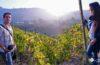 Descubriendo el Piamonte: Langhe-Roero y Monferrato