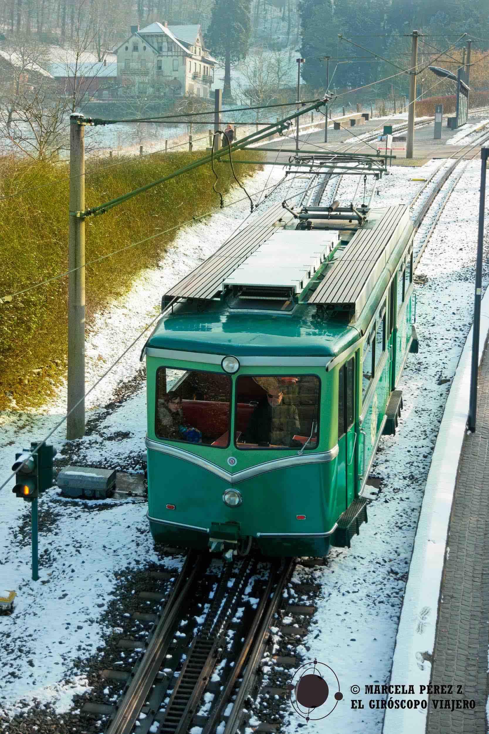 Tren que hace el recorrido hasta el Castillo de Drachenburg