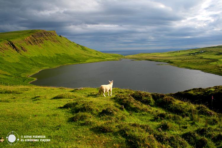 Inmersos en la naturaleza de Skye