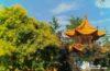 Un insólito jardín chino en Suiza. El Chinagarten de Zúrich