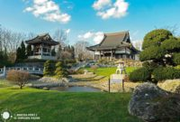 Un pedazo de Japón en Düsseldorf EKO-Haus der Japanischen Kultur