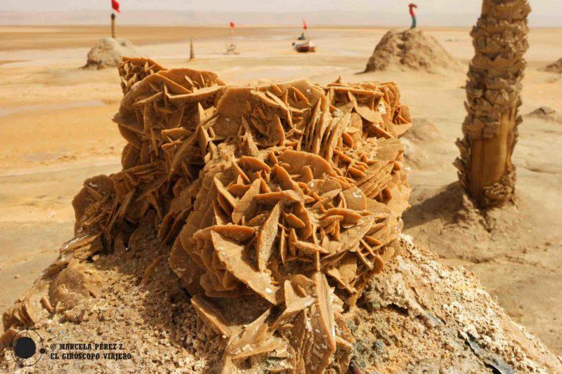 Rosas del desierto en el Chott El Djerid ©Marcela Pérez Z.