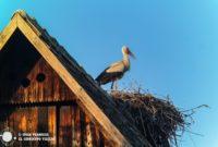 Eslavonia, la Croacia que hay que descubrir