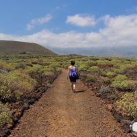 Ruta fascinante por el Malpaís de Güimar, Tenerife. Caminando por un mar de lava