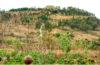 Yacimiento arqueológico de Cacaxtla en Tlaxcala