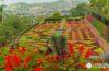 Un paseo sensorial por el Jardín Botánico de Madeira