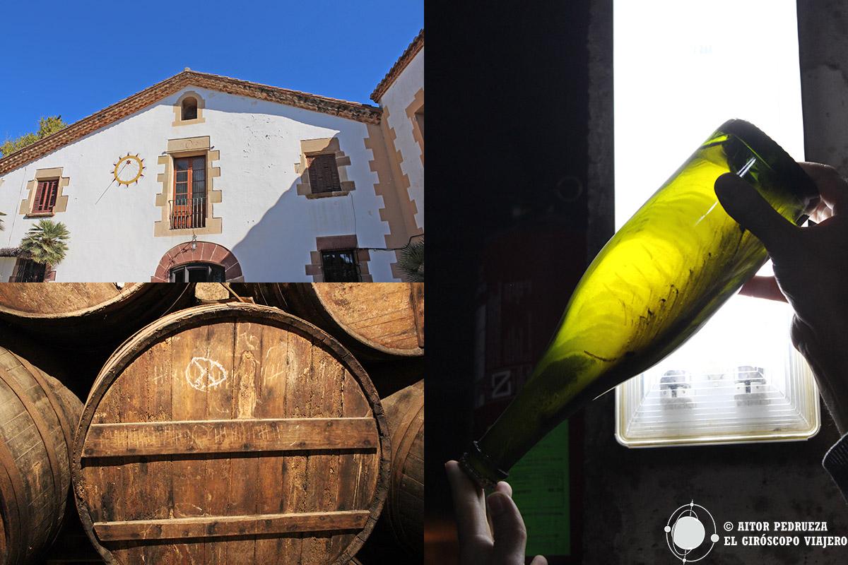 Visita a las bodegas de la Masía Can Sadurní en Begues