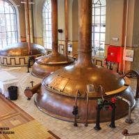 Lovaina, paradigma de la cerveza belga