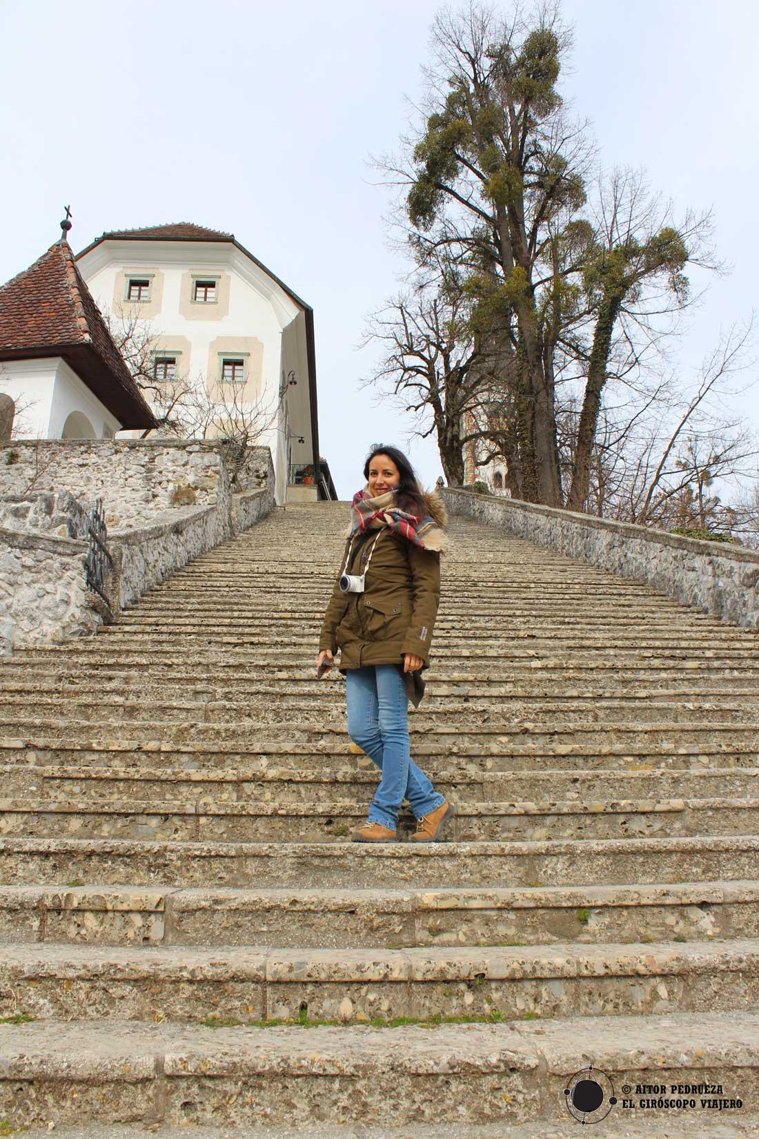 La escalera que sube en la isla de Bled hasta la iglesia