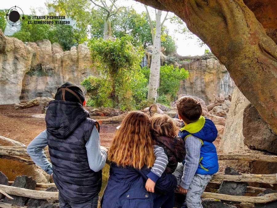 Bioparc de Valencia. Una propuesta perfecta para un viaje con niños