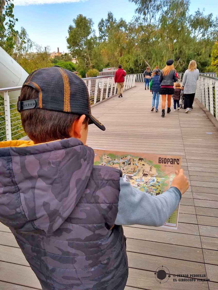Visita con niños al Bioparc de Valencia